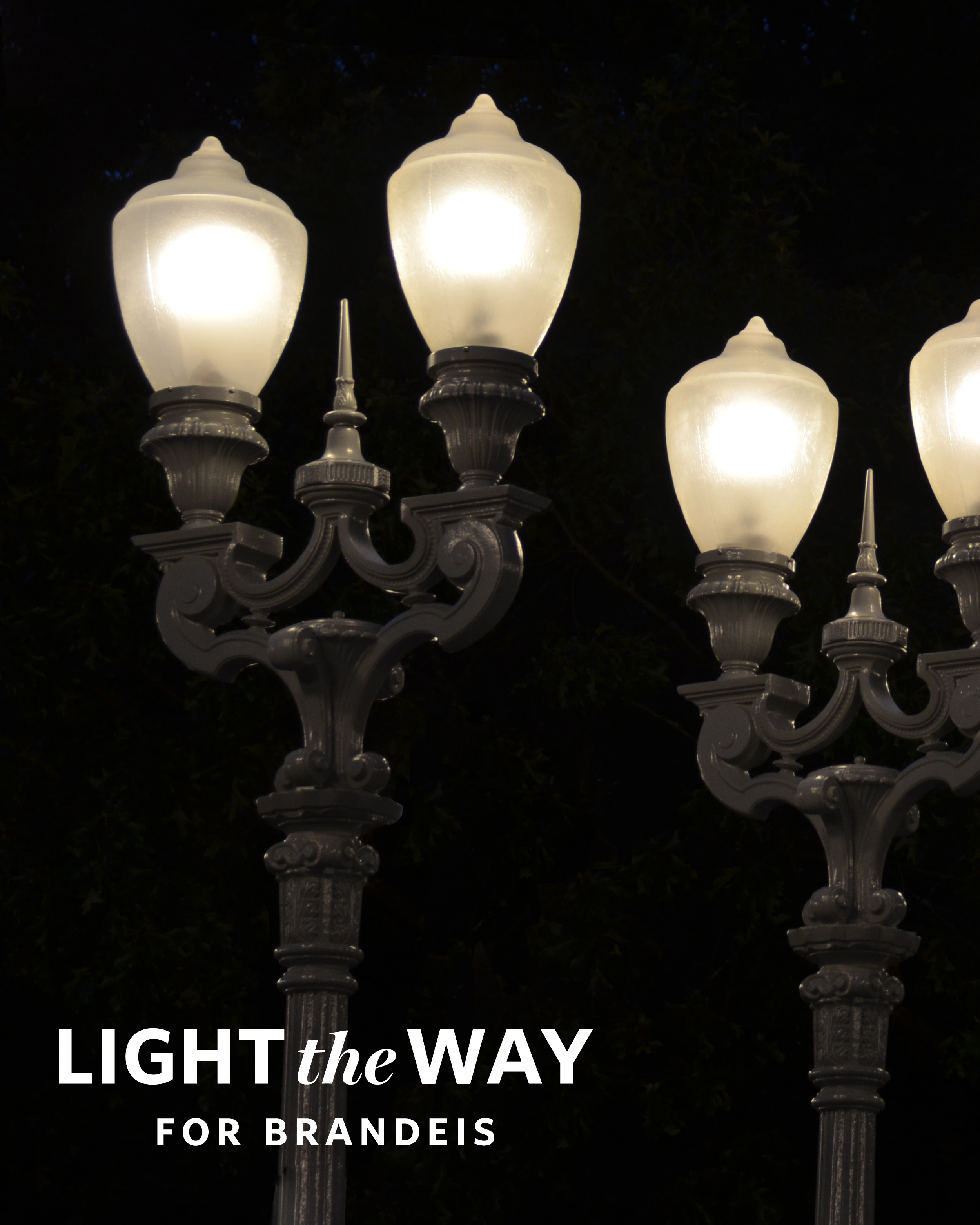 "The text ""Light the Way for Brandeis"" over a set of lampposts."